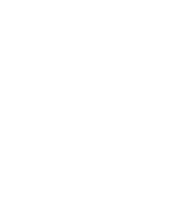 95 percent logo white